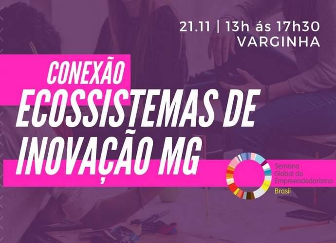 Conexão Ecossistema de Inovação acontece na Semana Global de Empreendedorismo em Varginha - Varginha Digital