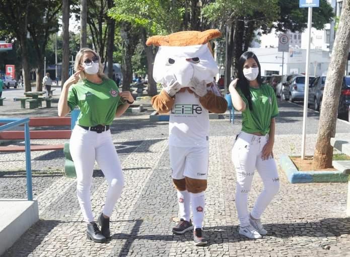 mascote do boa coronavirus