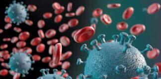 coronavirus moleculas unifal covid-19