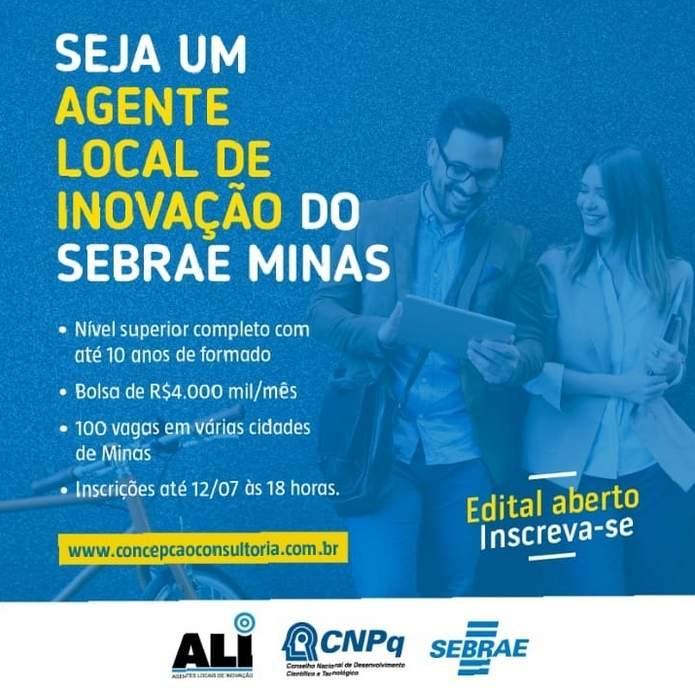 Agentes Locais de Inovação ALI Sebrae MG