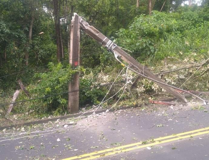 Árvore cai sobre a rede elétrica