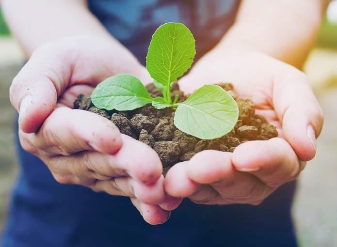 Unifal sustentabilidade